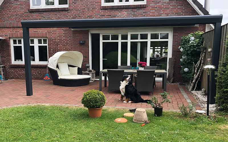 Terrassendach mit Haustier Hund